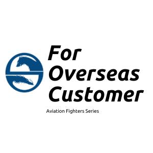 For Overseas Customer